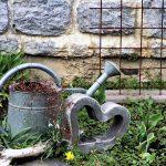 Kerttervezés – kertünk adottságainak figyelembe vétele
